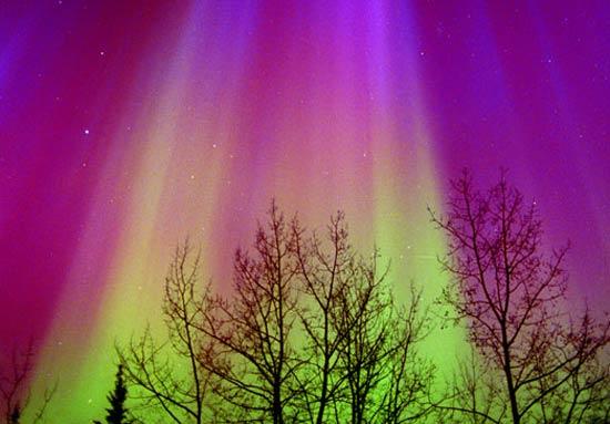 Aurora in Red