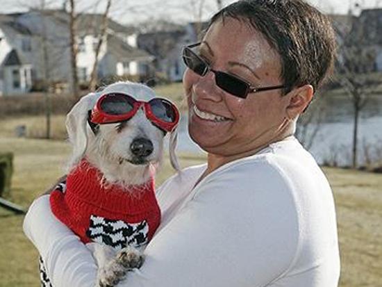 Με γυαλιά & πουλόβερ το γηραιότερο σκυλί