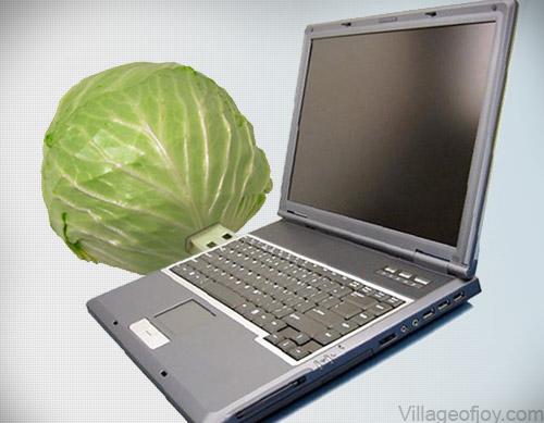 Realistic usb flash drives cabbage