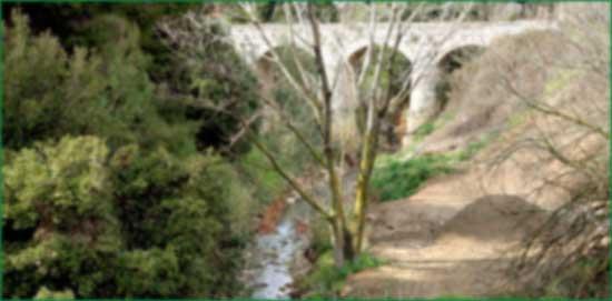 Γέφυρα Δουκίσσης Πλακεντίας