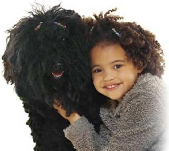Σκύλοι & αφεντικά