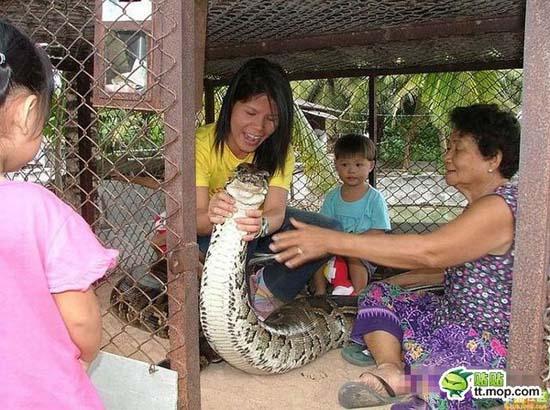 Παίζοντας με ένα τεράστιο φίδι (5)