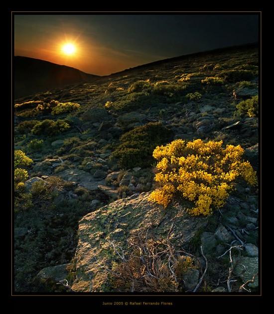 Τοπία - Φύση