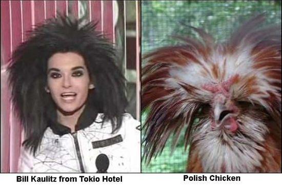 Διάσημοι που μοιάζουν με περίεργα πλάσματα