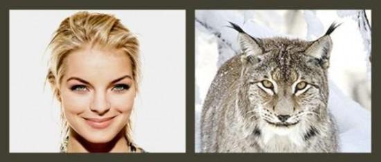Αν οι διάσημοι ήταν ζώα
