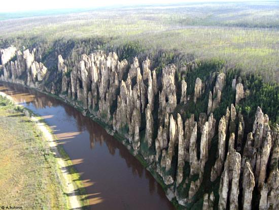 Πέτρινο δάσος