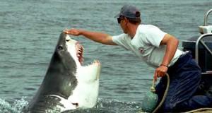 Φιλία μεταξύ ανθρώπου και καρχαρία (Photos)
