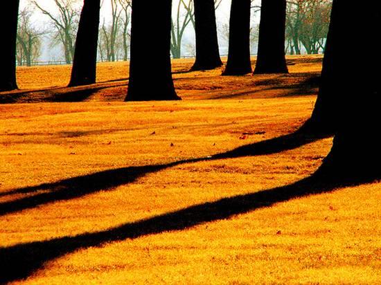 υπέροχες σκιές (7)
