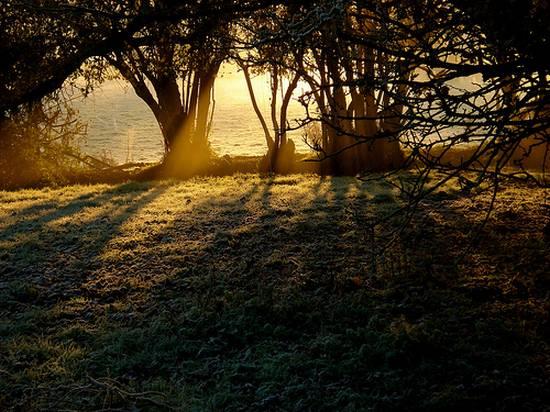 υπέροχες σκιές (1)