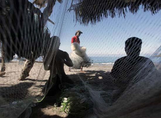 Κυνήγι φαλαινών στην Ινδονησία (6)