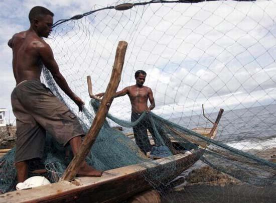 Κυνήγι φαλαινών στην Ινδονησία (7)