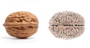 Τροφές που αντικατοπτρίζουν το μέρος του σώματος που οφελούν