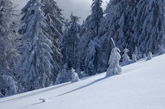 Χειμώνας (12)