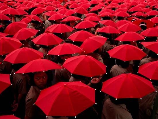 Ζωή σε κόκκινο (1)