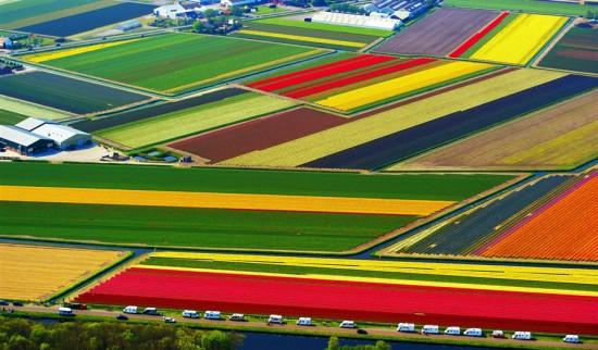 Φωτογραφία της ημέρας: Ταξίδι στην Ολλανδία