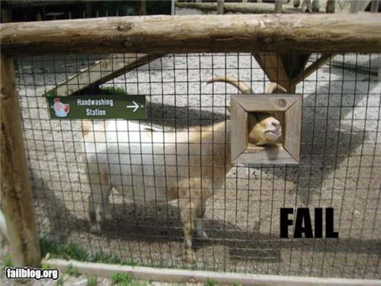 FAIL (16)