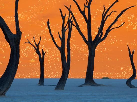 Φωτογραφία της ημέρας: Το «Photoshop» της φύσης