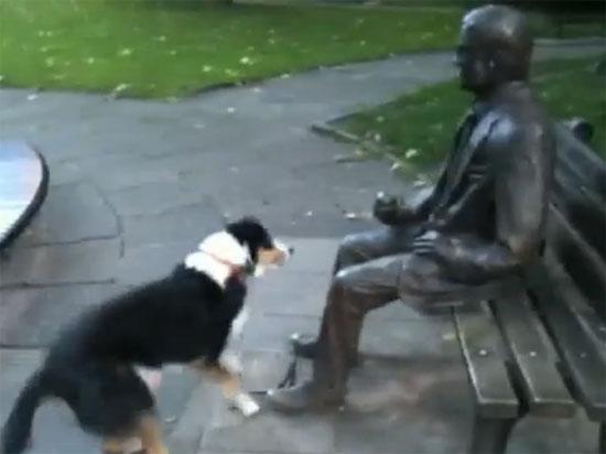 Σκύλος προσπαθεί να παίξει με άγαλμα