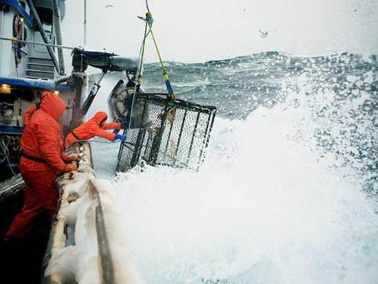 Bering Sea (2)