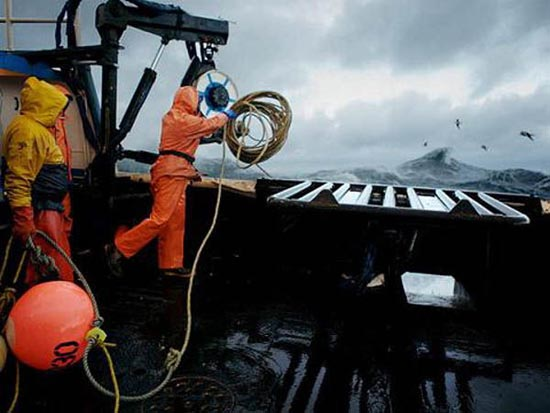 Bering Sea (6)