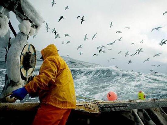 Bering Sea (10)