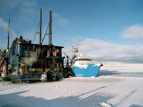 Bering Sea (18)