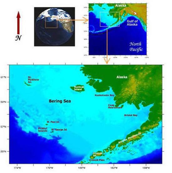 Bering Sea (19)
