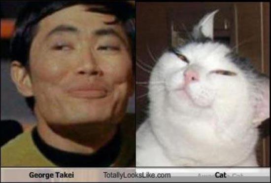 Διάσημοι που μοιάζουν με περίεργα πλάσματα (4)