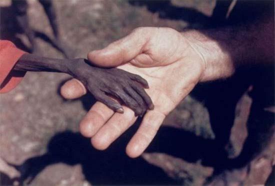 Τα πρόσωπα της φτώχειας (18)