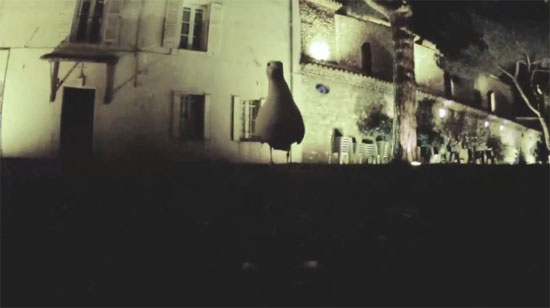 Γλάρος έκλεψε κάμερα και τράβηξε video