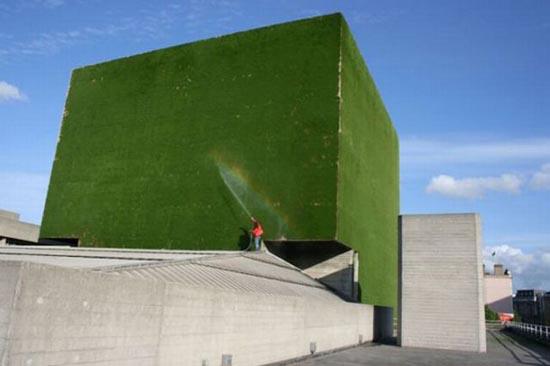 Go Green! (4)