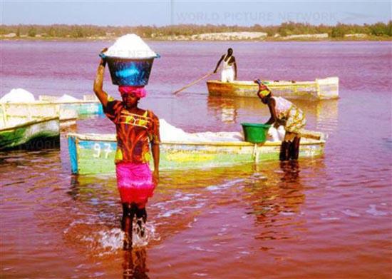 Ροζ λίμνη στη Σενεγάλη (2)