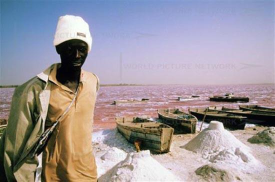 Ροζ λίμνη στη Σενεγάλη (4)