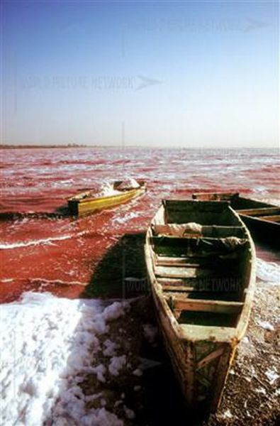 Ροζ λίμνη στη Σενεγάλη (20)