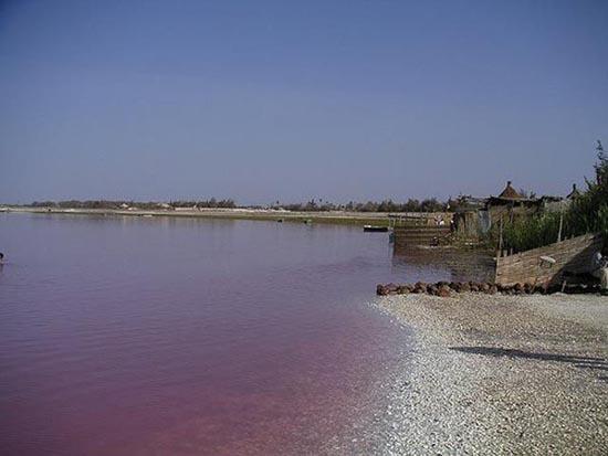 Ροζ λίμνη στη Σενεγάλη (22)