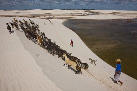 Εντυπωσιακοί αμμόλοφοι στην Βραζιλία (13)