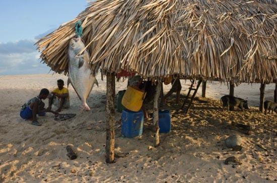 Εντυπωσιακοί αμμόλοφοι στην Βραζιλία (16)