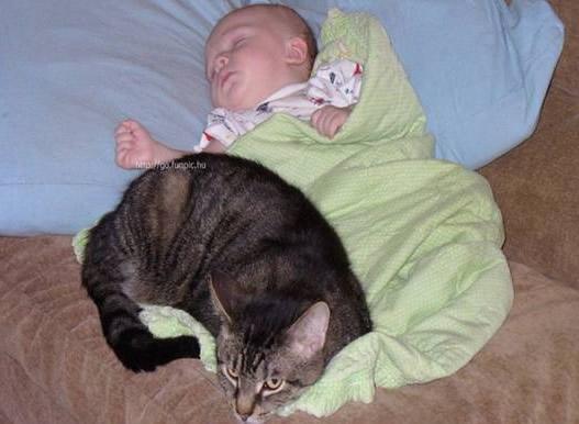Αχώριστοι στη ζωή και στον ύπνο (2)