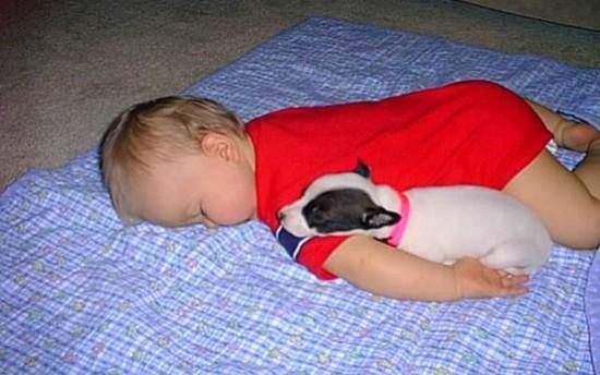 Αχώριστοι στη ζωή και στον ύπνο (4)