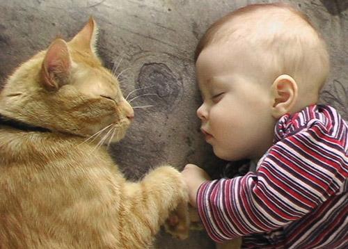 Αχώριστοι στη ζωή και στον ύπνο (15)