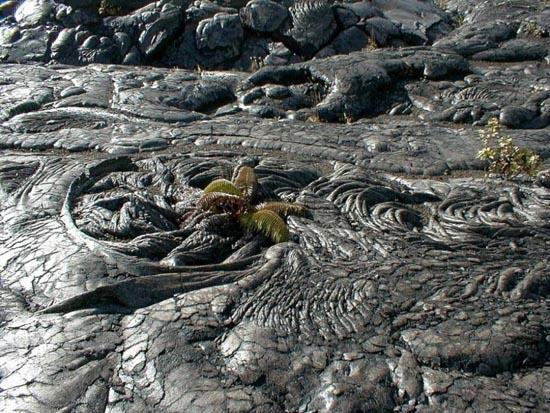 Εκπληκτικές φωτογραφίες ηφαιστειακών εκρήξεων (10)