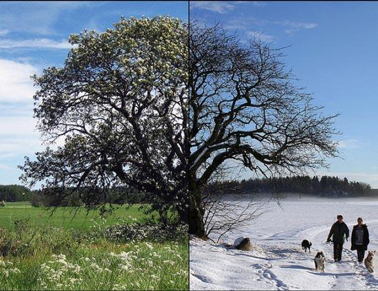Καλοκαίρι vs Χειμώνας (10)