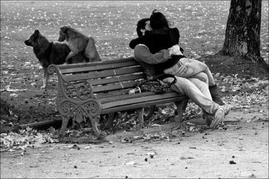 Φωτογραφία της ημέρας: Ρομαντικές στιγμές στο πάρκο