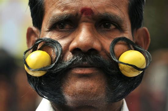 Φωτογραφία της ημέρας: Μουστάκι με λεμόνια