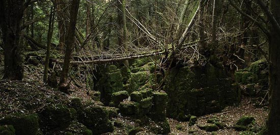 Puzzlewood: Η έμπνευση του Tolkien για την Middle-earth (10)