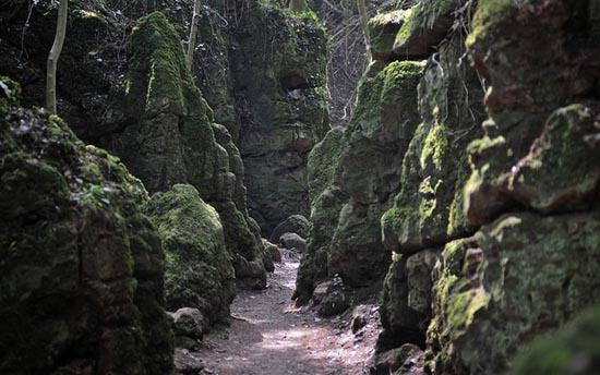 Puzzlewood: Η έμπνευση του Tolkien για την Middle-earth (17)