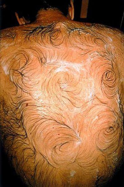 Η τέχνη της τριχωτής πλάτης (3)