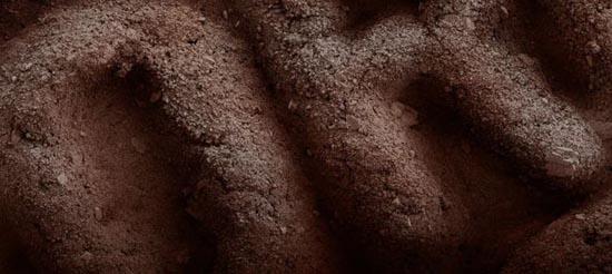 Τροφές κάτω από το μικροσκόπιο (15)