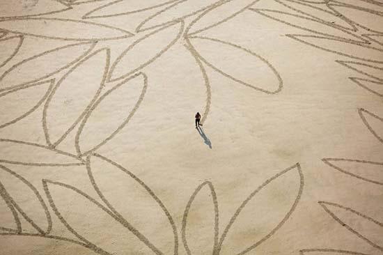 Εξωπραγματική τέχνη σε παραλίες από τον Jim Denevan (17)