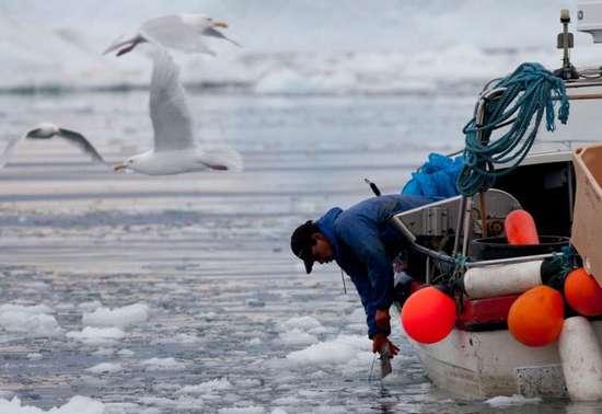 Γροιλανδία (15)
